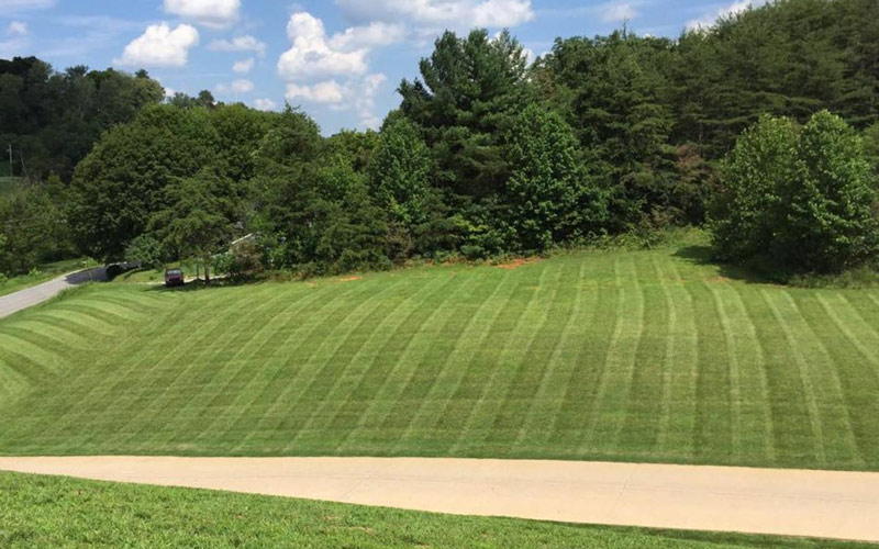 Photo of Lawn Care Service Results of Freshly Mown Large Lawn