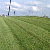 Photo of Freshly Cut Grass With Beautiful Striping Executed By Professional Landscaping Service